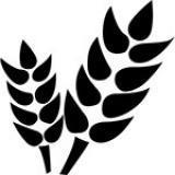 Зерновые рынки
